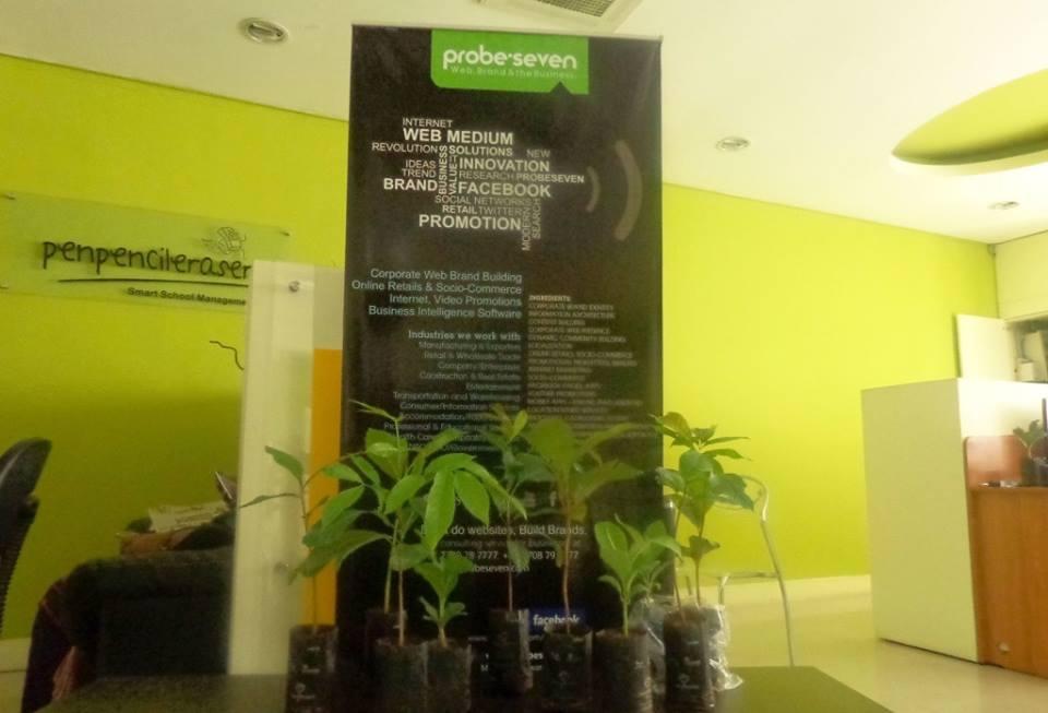 Green Plantation - poster
